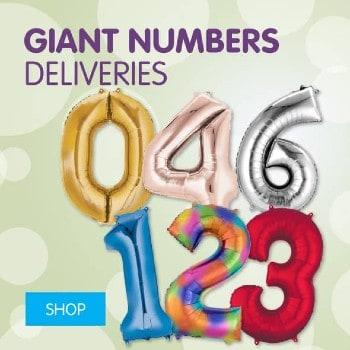 590x590-ICON-Giantnumbers350x350